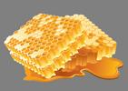חלת דבש-150-100h